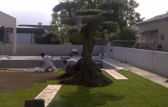 gazon setex paysagistes gen ve cr ation entretien et am nagement des jardins. Black Bedroom Furniture Sets. Home Design Ideas